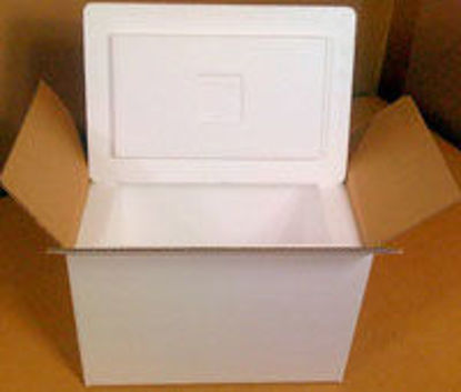 """Picture of Insulated Shipping Kit Includes 18 1/4 x 15 3/8 x 16"""" Box LG"""